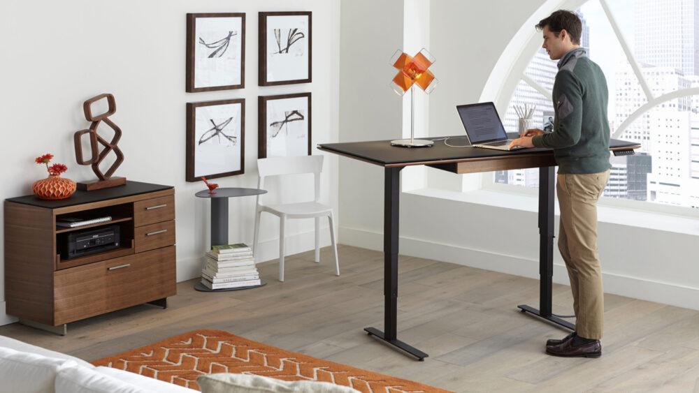 escritorio elevable o standing desk